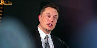 Nhà đầu tư muốn Elon Musk ngừng 'lái' tiền số