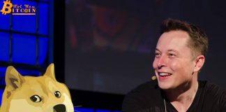 Elon Musk ám chỉ cha đẻ Ethereum là 'kẻ sợ chó'