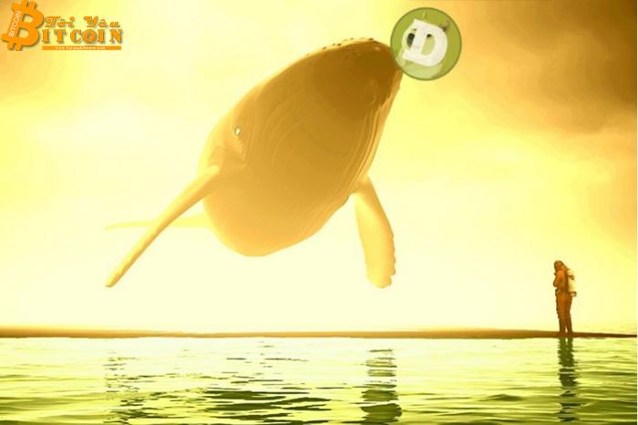 Cá voi Dogecoin đang hoạt động chậm lại khi hàng tỷ USD chảy ra khỏi thị trường
