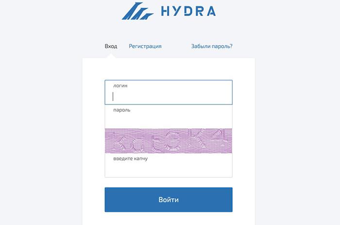 Cần phần mềm đặc biệt để truy cập web đen Hydra. Ảnh: ZDNet.
