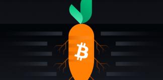 Bản nâng cấp Bitcoin Taproot