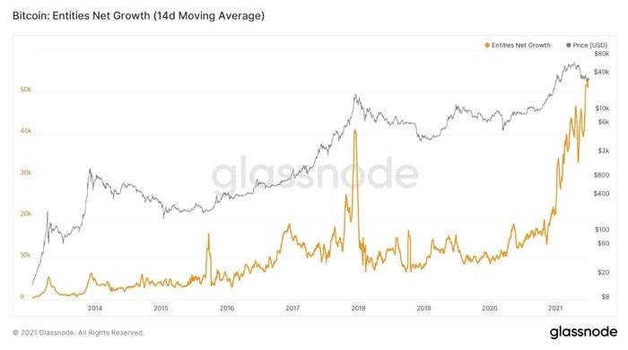 Biểu đồ trung bình 14 ngày của các thực thể Bitcoin. Nguồn: William Clemente/ Glassnode