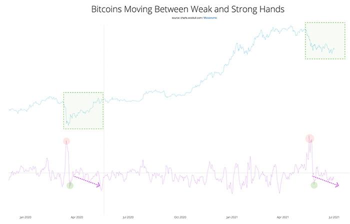 """Bitcoin đang chuyển từ """"những cánh tay yếu"""" sang những """"người khỏe gồng"""". Nguồn: Bản tin Willy Woo"""