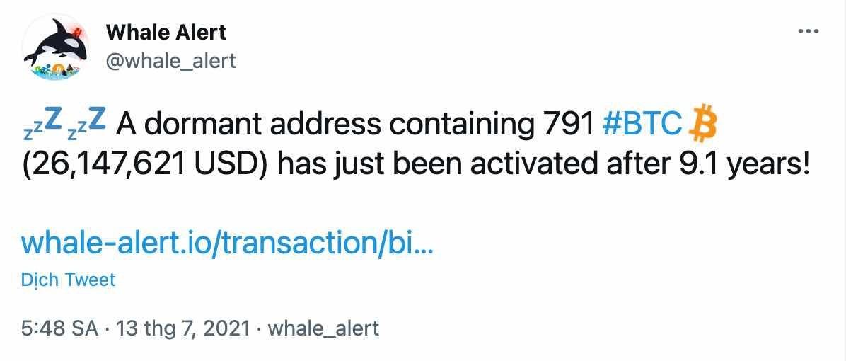 Đoạn tweet của Whale Alert thông báo một ví Bitcoin được kích hoạt sau 9,1 năm ngừng hoạt động. Ảnh: Chụp màn hình.