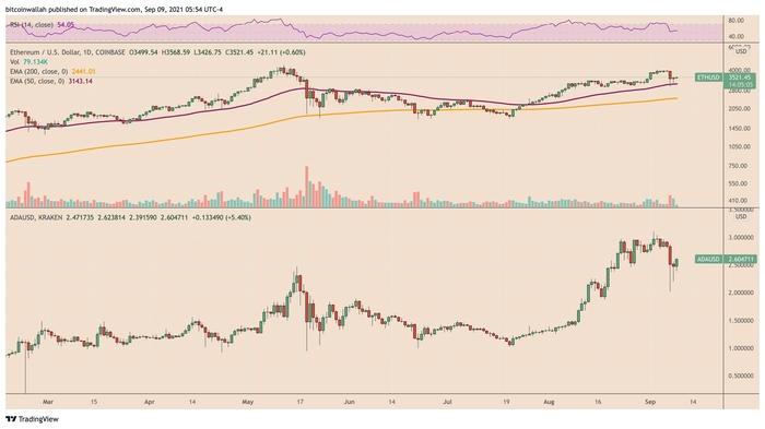 Hiệu suất giá của Solana so với các đối thủ hàng đầu Ethereum và Cardano. Nguồn: TradingView