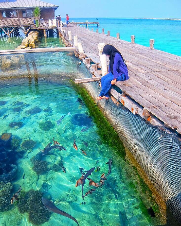 Surga Bawah Laut Mempesona Di Pulau Harapan Kepulauan Seribu