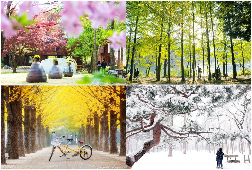 itinerary liburan ke korea selatan hemat bersama keluarga 5h4m. Black Bedroom Furniture Sets. Home Design Ideas