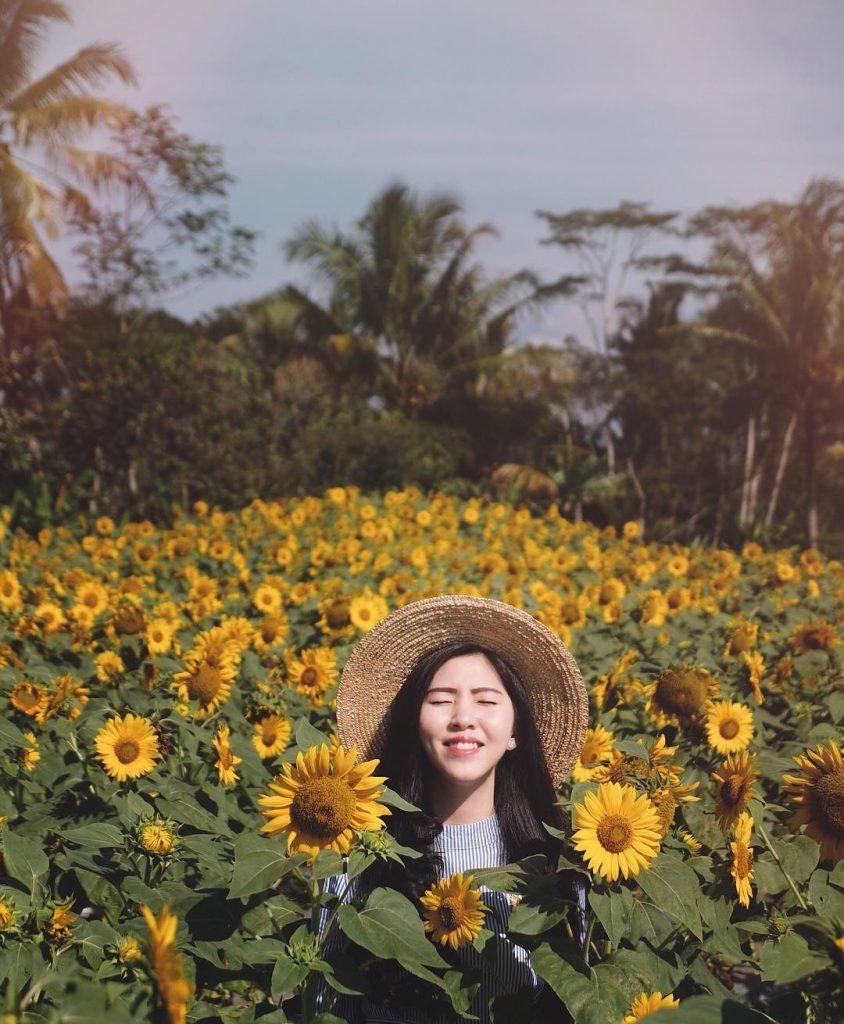 15 Wisata Taman Bunga Di Indonesia Yang Membuatmu