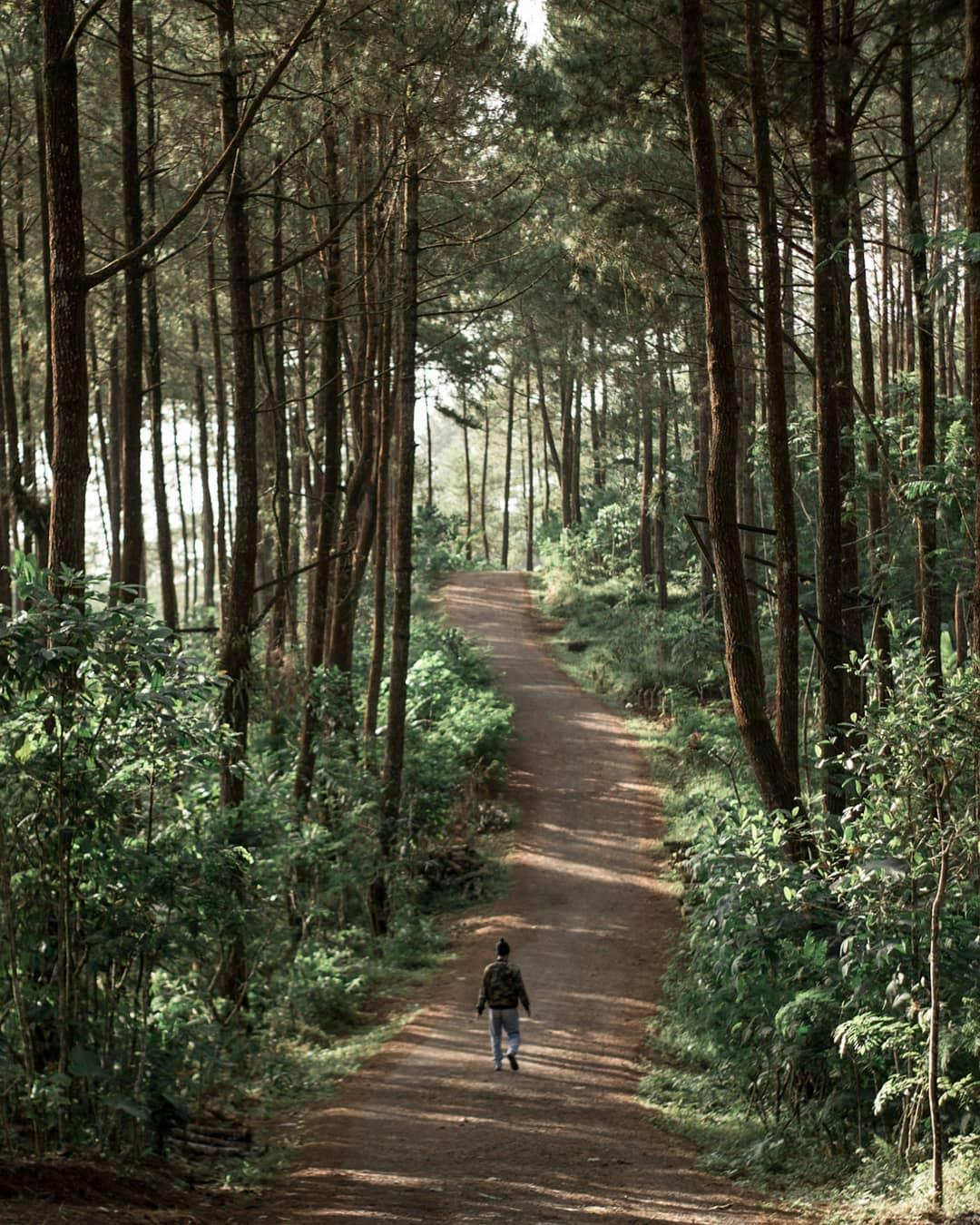 10 Destinasi Wisata Di Purworejo Yang Bikin Melongo