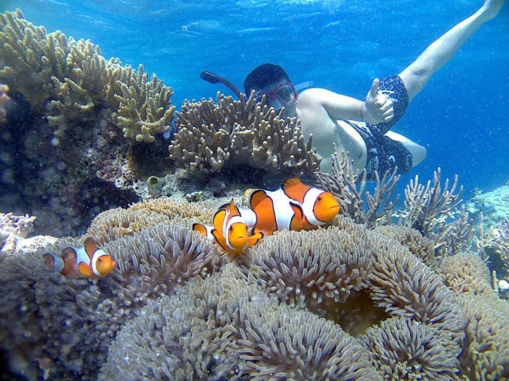 Pesona 16 Destinasi Wisata Di Bali Barat Yang Belum Banyak