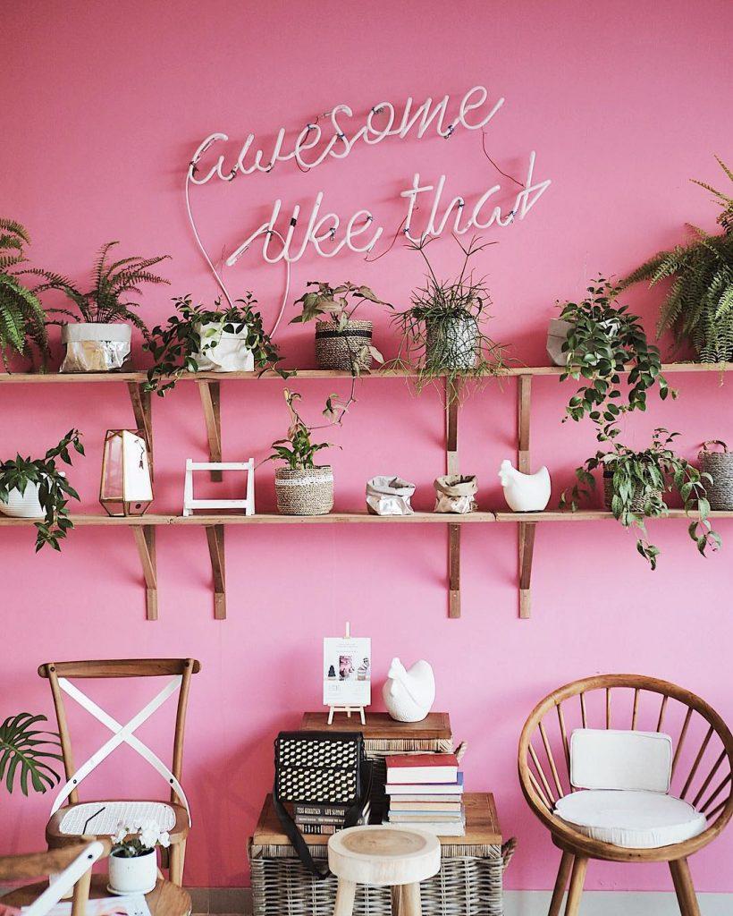 kafe serba pink 1