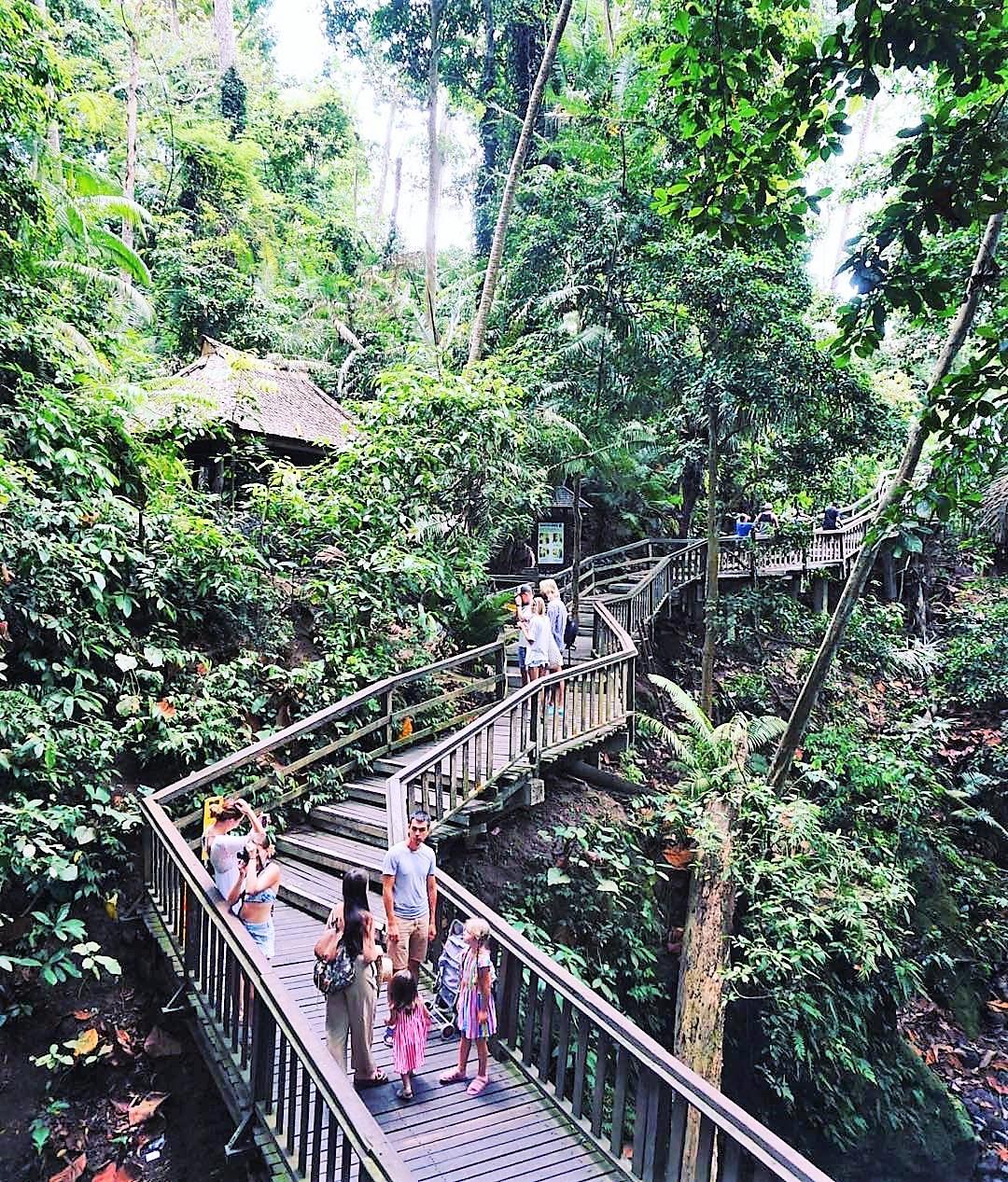 Itinerary Wisata Ubud Bali Untuk Weekend Getaway Yang
