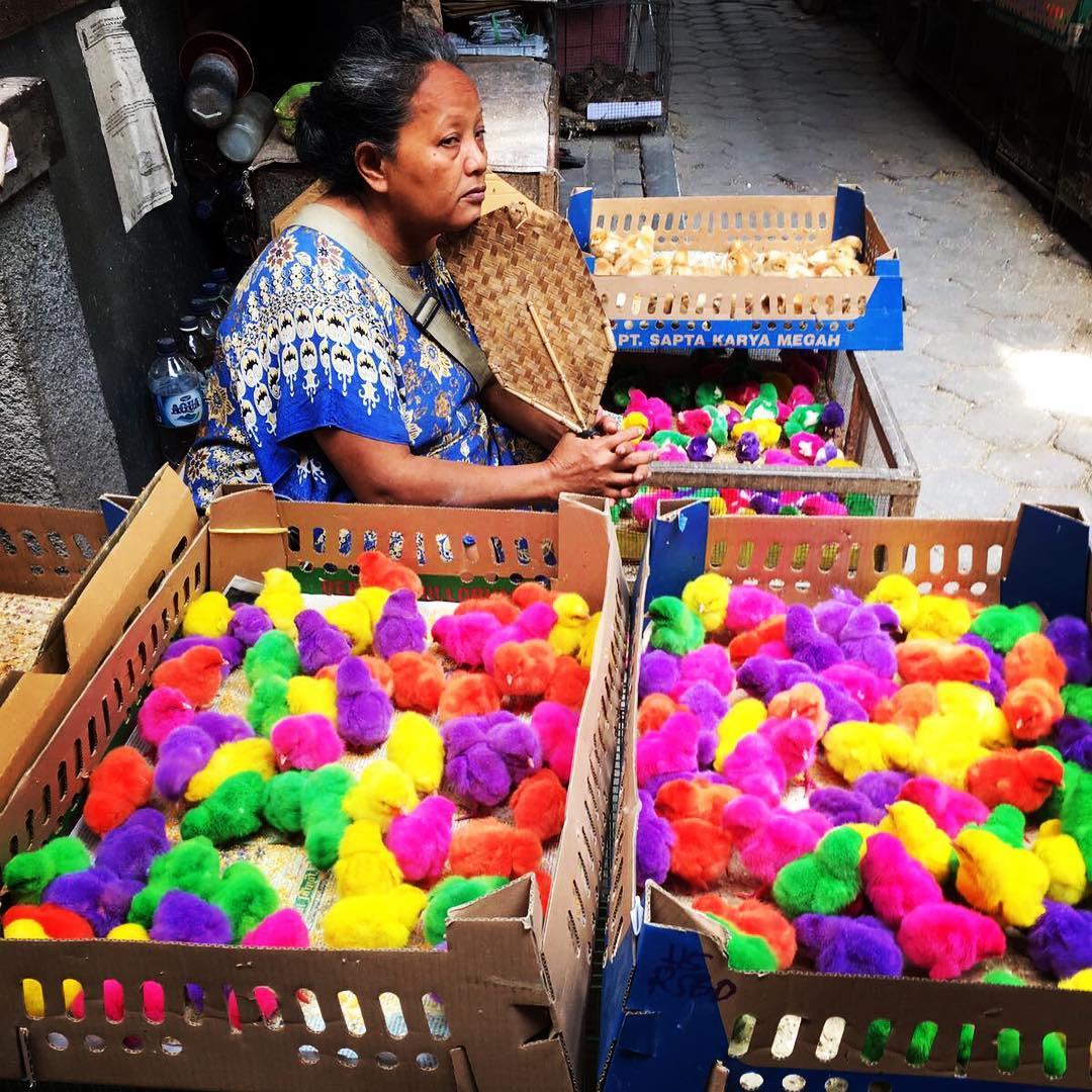 Pasar Tradisional Yogyakarta