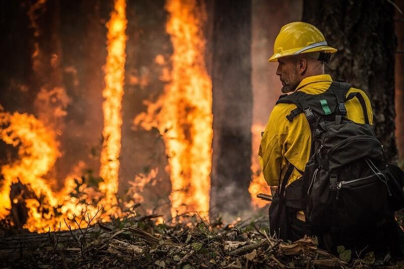 Persyaratan Working Holiday Visa Australia dipermudah untuk membantu proses pemulihan pasca bencana kebakaran hutan dan lahan di Australia.
