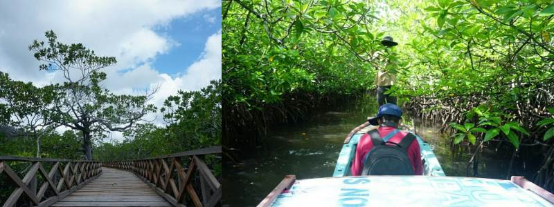 Destinasi wisata Natuna