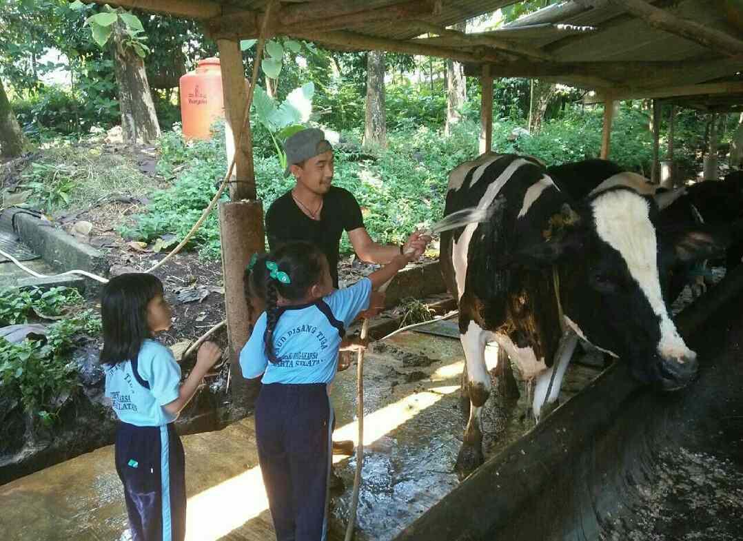 Kampung 99 Pepohonan   tempat wisata alam depok