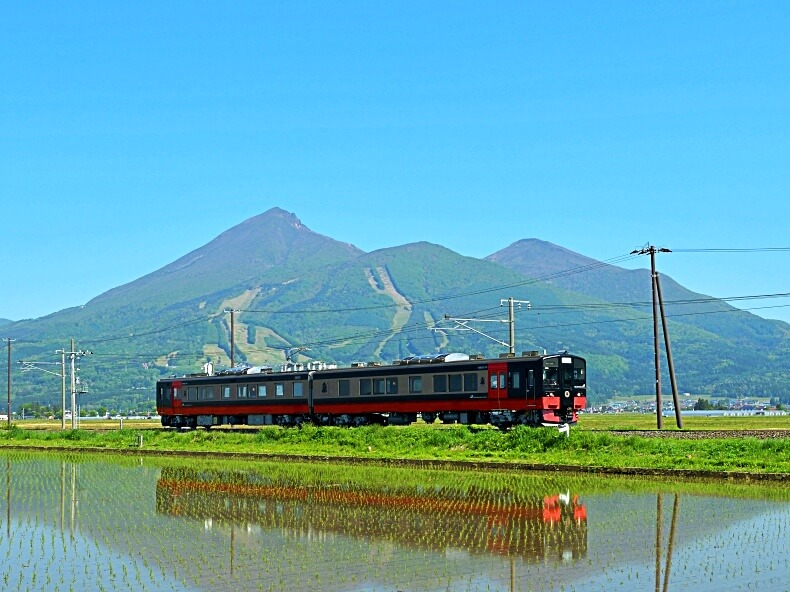 Joyful Trains FruiTea Fukushima