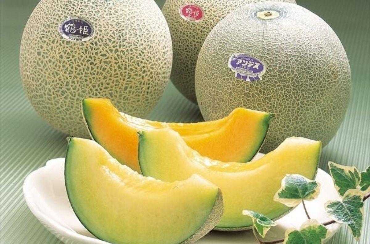 Shōnai Melon