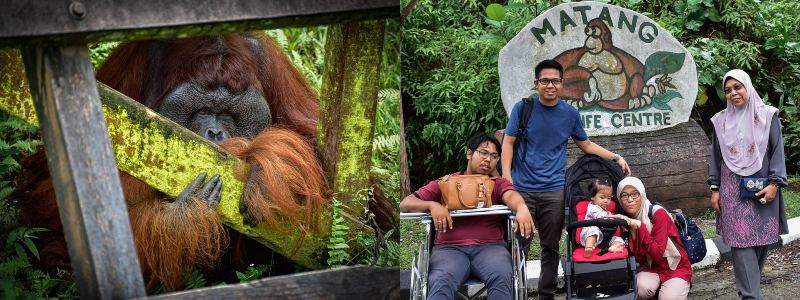 Matang Wildlife Centre | tempat wisata di Kuching
