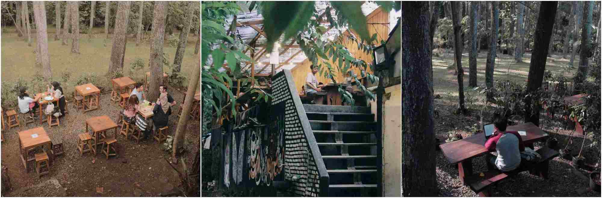 Kopi Tahura | cafe hutan bandung
