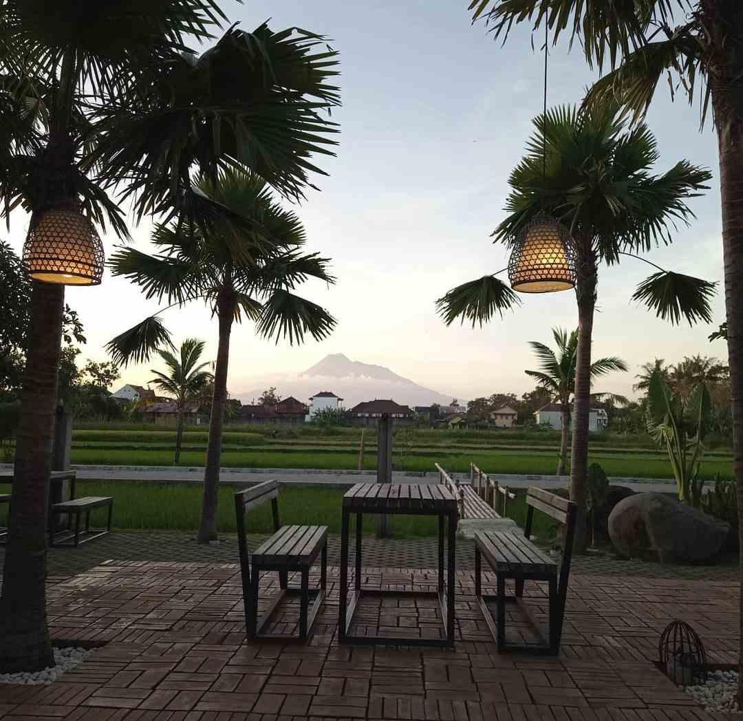 tempat makan jogja dengan view sawah