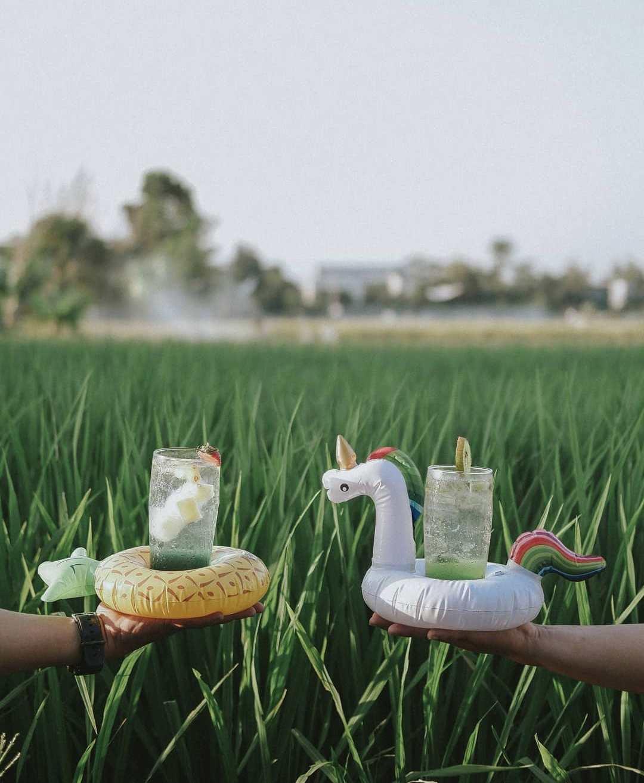 tempat makan di jogja dengan view sawah