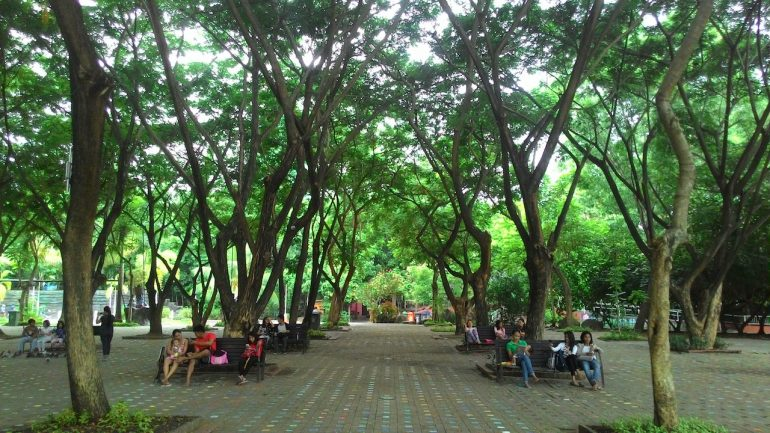 10 Reasons Why You Should Visit Davao City Tripzilla