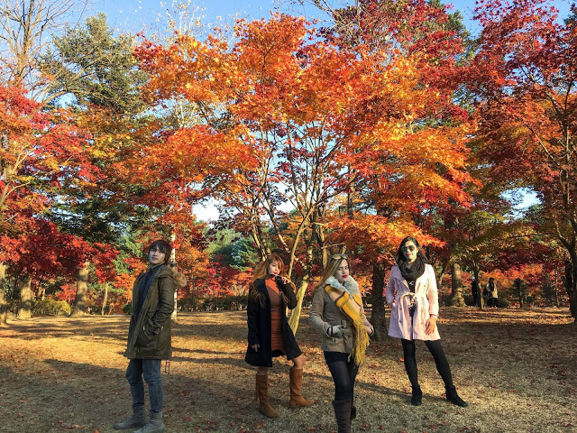 A 5 Day Itinerary In South Korea At Autumn Season