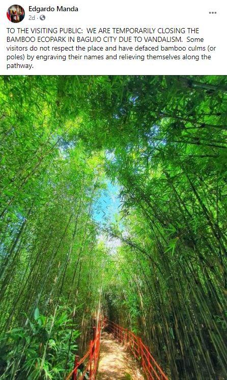 baguio bamboo eco park