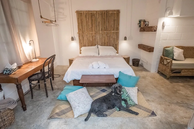 Pet-Friendly Airbnb in Zambales, Philippines