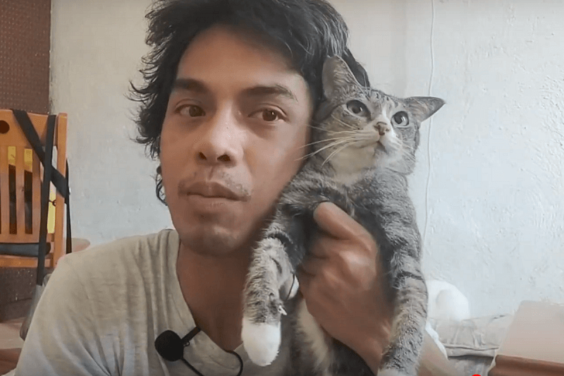 Cat Vloggers