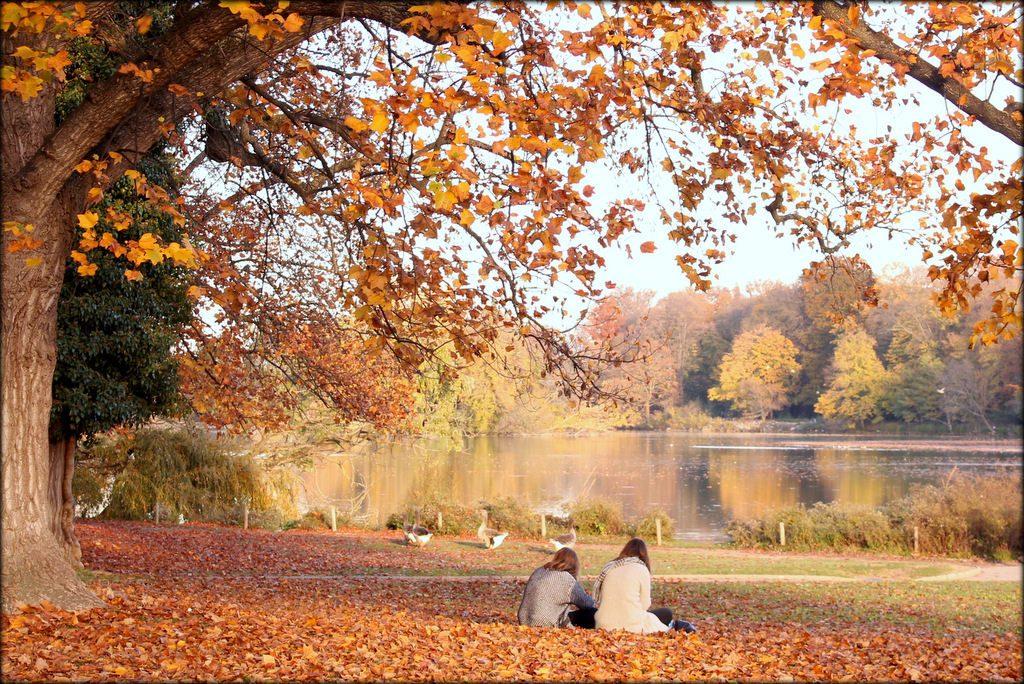 Công viên Đầu Vàng (Parc de la Tête d'Or)