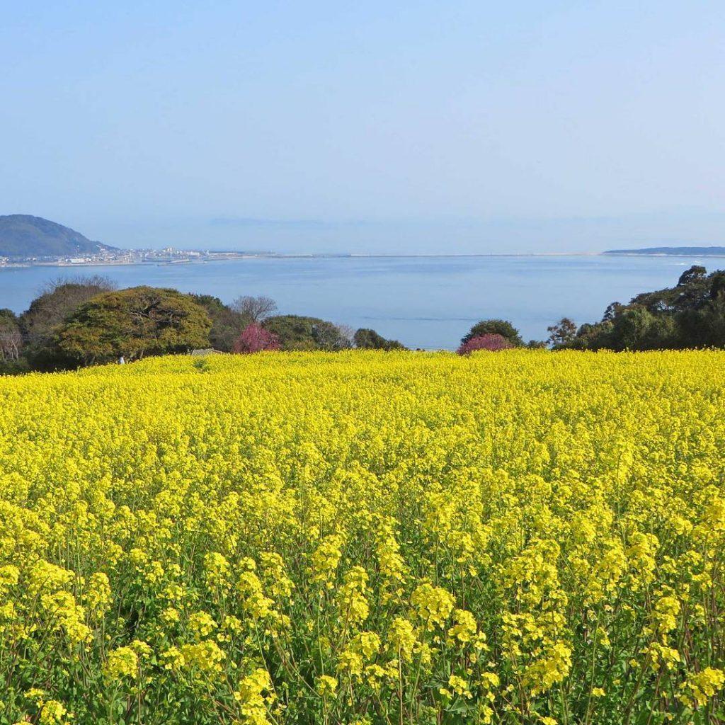 nokonoshima Fukuoka, Nhật Bản