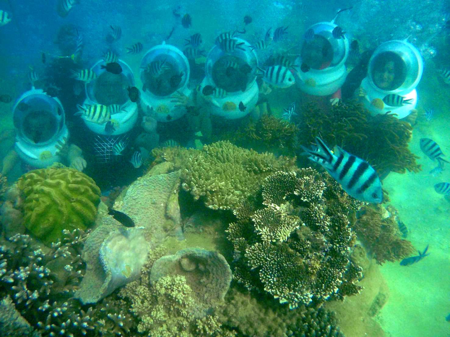 đi bộ dưới biển, thể thao biển tại Nha Trang