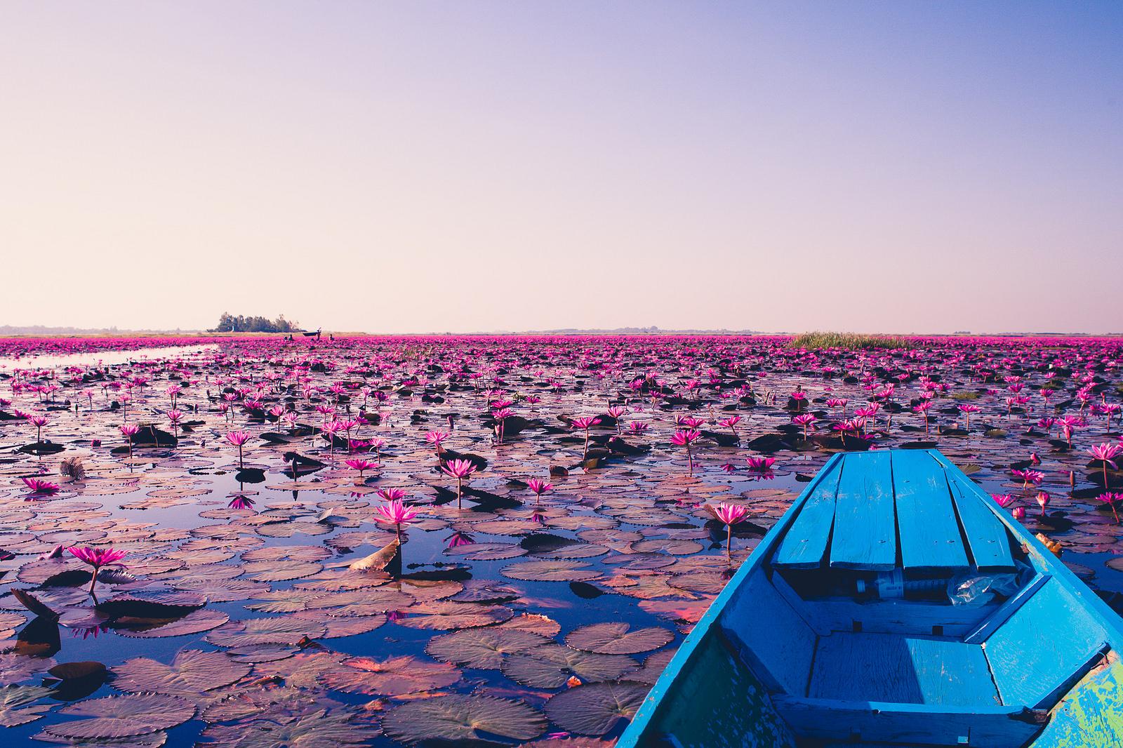 Có địa danh nào khác gần Biển Sen Đỏ