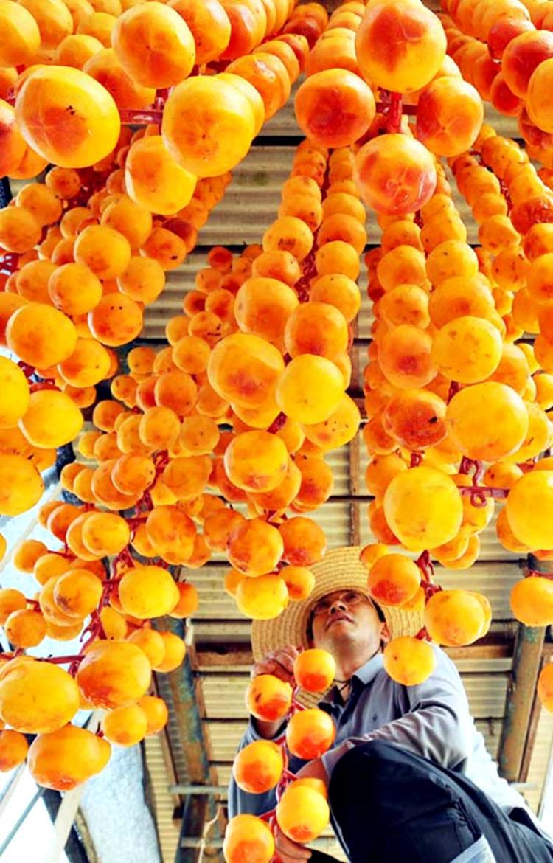 Chơi gì ở Hàn Quốc? Thưởng thức ẩm thực trong mùa bội thu