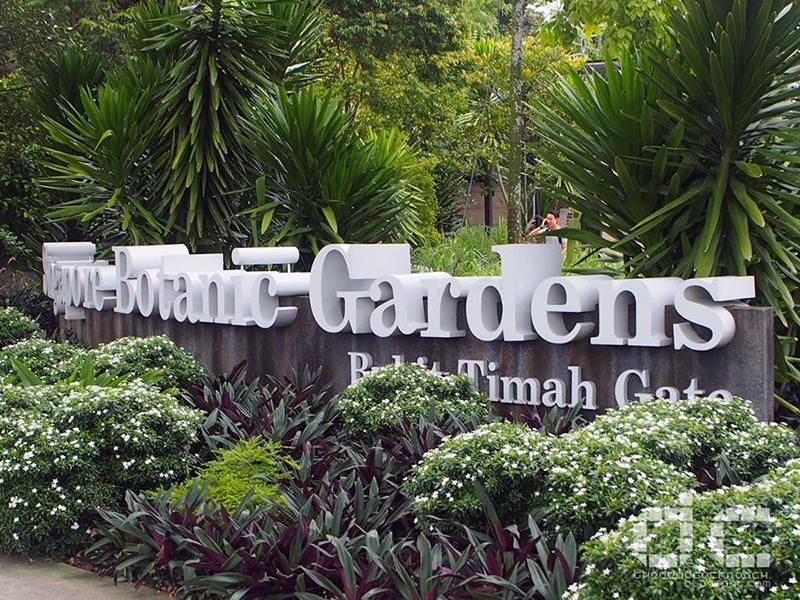 Địa điểm tham quan du lịch ở Singapore: Botanic Gardens