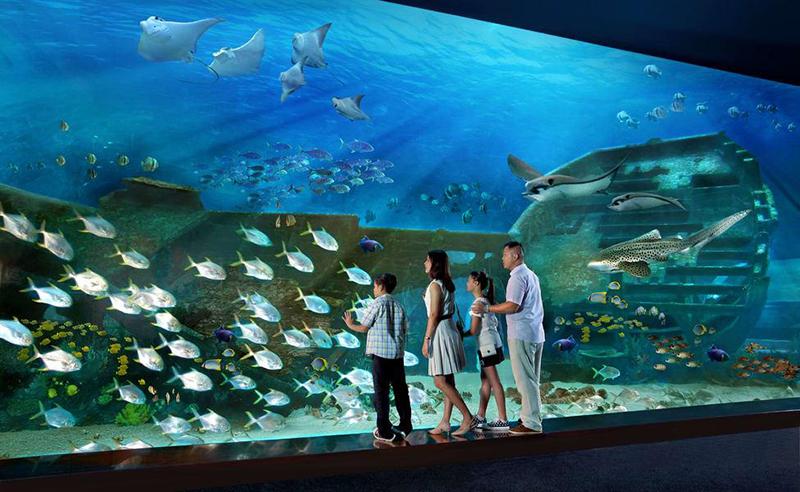 Địa điểm tham quan du lịch ở Singapore: Thủy cung S.E.A