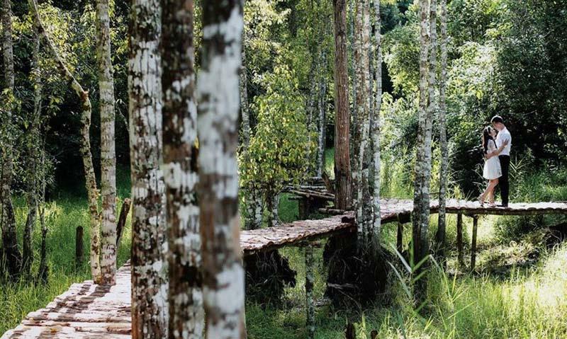Secret Garden lãng mạn, hoang sơ và có hơi chút ma mị
