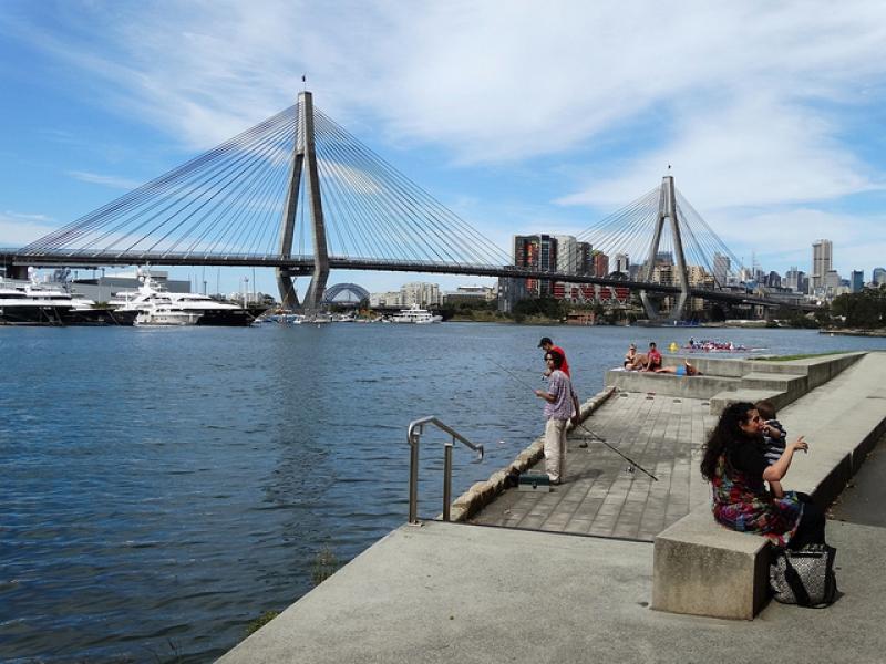 Lich trinh du lich Sydney: Công viên vịnh Blackwattle