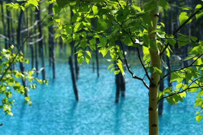 Hồ Nước Xanh Blue Pond