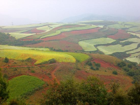 vùng đất đỏ Dongchuan