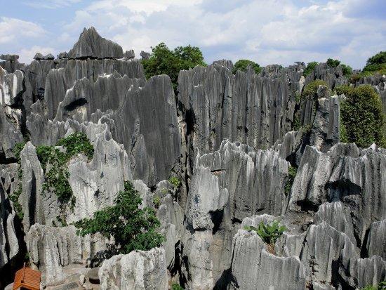 khu rừng đá (Thạch Lâm)