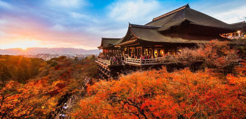 Mùa thu ở Kyoto Nhật Bản ngập lá đỏ