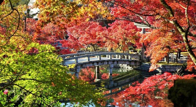 đền Eikando Zenrinji, Kyoto