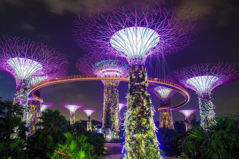 Supertree ở Gardens By the Bay