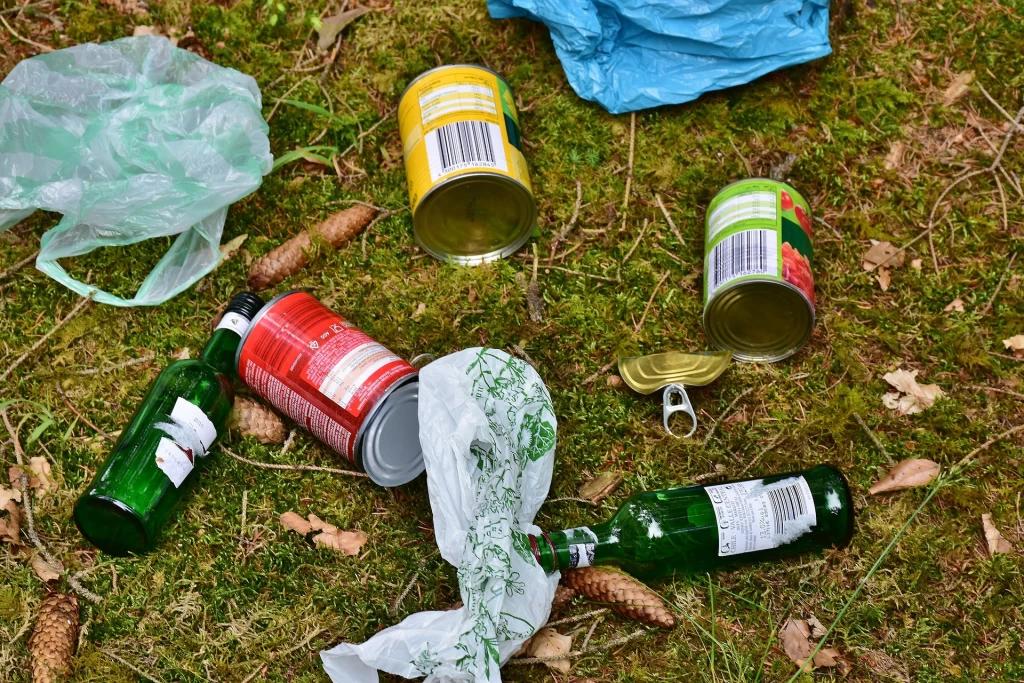 Không nên vứt rác bừa bãi không đúng nơi quy định