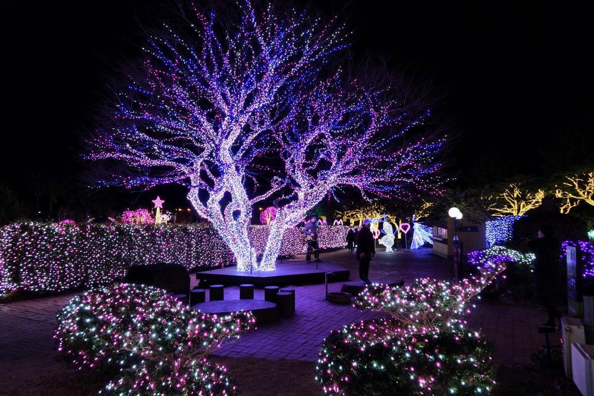 Jeju địa điểm du lịch dịp giáng sinh