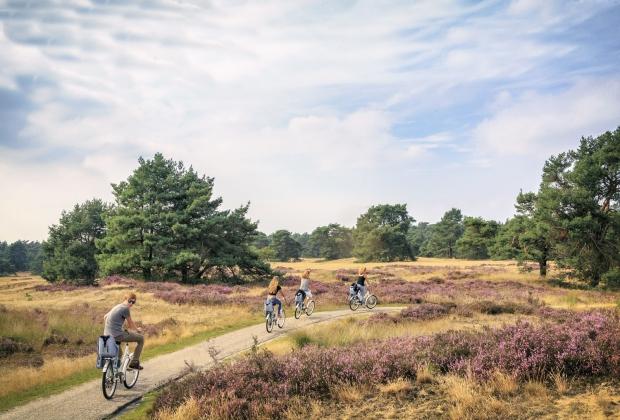 đi đâu ở Hà Lan - The Hoge Veluwe National Park