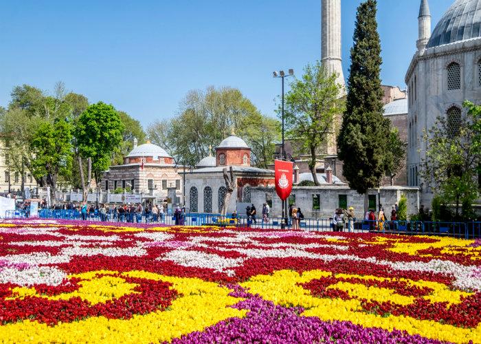 Rực rỡ lễ hội Hoa Tulip tại Istanbul